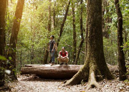 backpacker-friends-forest